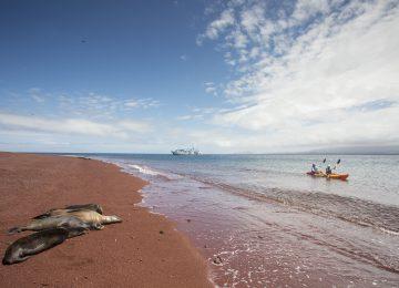 Yacht Isabela II Galapagos Kayak