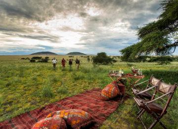 1 Kenia_Luxus Safari_private picknick_MasaiMara_olDonyoLodge©GreatPlainsConservation
