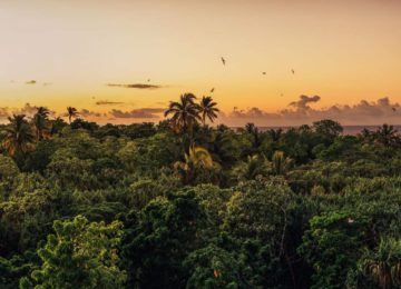10 French Polynesia Private Island Nukutepipi © credit Tekura