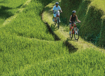13Reisfelder_Fahrradtour@FourSeasons_Bali_at_Sayan
