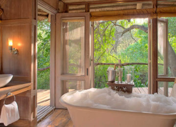 2 Tansania_Luxus_Safari_Manyara Tree Lodge©andBeyond
