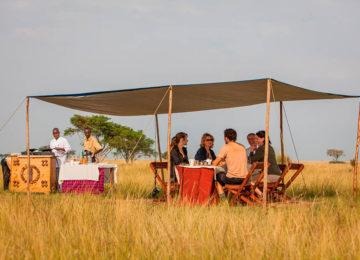 2_Ishasha Wilderness Camp©The Uganda Safari Company