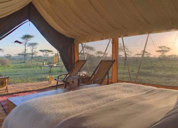 Serengeti-Guest-Room8.jpg