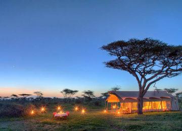 Serengeti-Guest-Room4.jpg