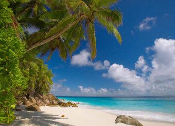 8Seychellen_beaches__Fregate_AnseVictorin©Fregate Island