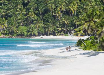 Indischer Ozean – Seychellen – North Island