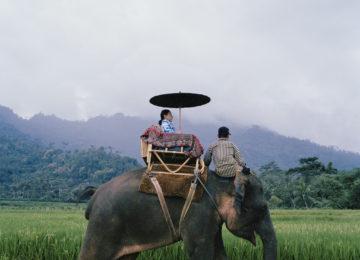 Amanjiwo, Indonesia – Elephant Ride
