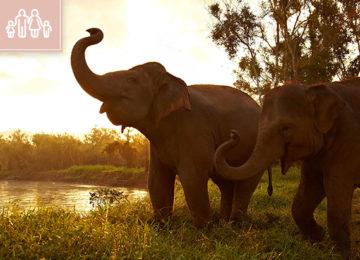 Asien - Thailand