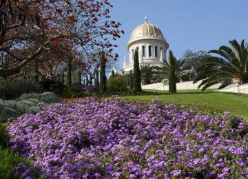 THE BAHAI GARDENS AND TEMPLE IN HAIFA