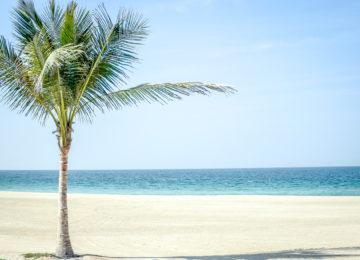 Beach _The Oberoi Beach Resort Al Zorah