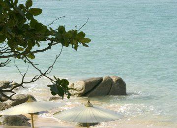 Beach Setting & Service