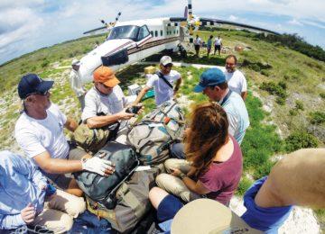 Astove Island Arrival