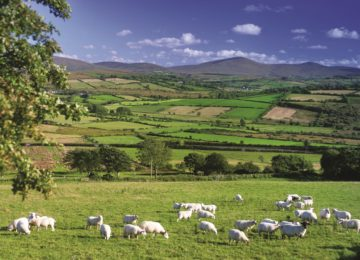 Central Sperrins