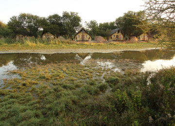Chalets©Tau Game Lodge