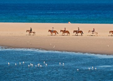 Chia Laguna Resort Sardinien_HORSE RIDING