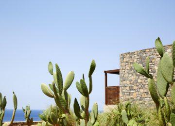 Daios Cove Luxury Resort & Villas_ Kreta_Architecture