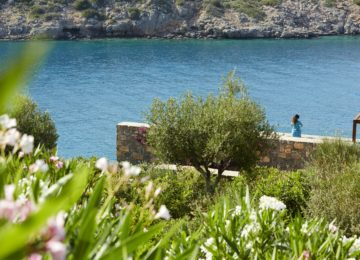 Daios Cove Luxury Resort & Villas_ Kreta_Nature