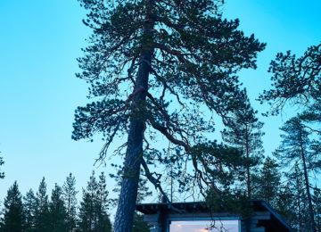 Finnland©Octola Lodge Private Wilderness