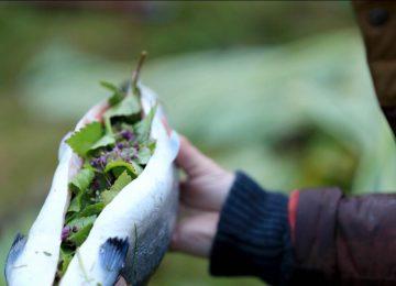 Fischzubereitung BBQ © Nordic Luxury