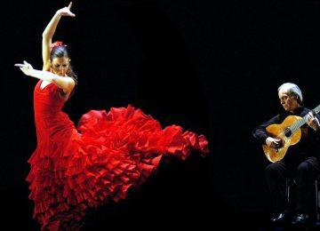 Flamenco © ids