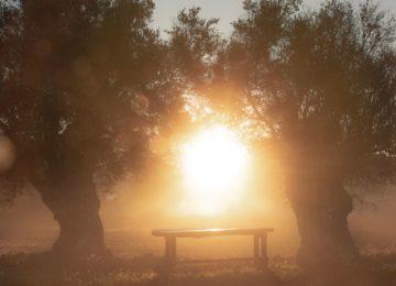 Sonnenuntergang©Six Senses Ibiza
