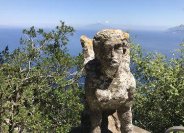 Capri Palace Garten