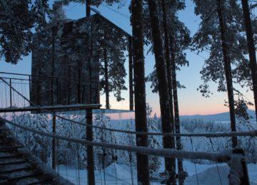 Design Treehotel Schweden Lappland