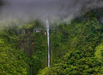 MAUI©-fourseason -hawaii