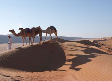 Oman Camel Safari Luxury Tent Desert Night Camp Hotel Oman Select Luxury Travel
