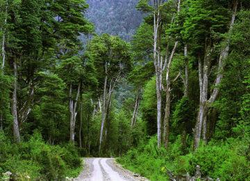 Patagonien Offroad, Termas de Puyuhuapi