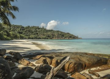 Petite Anse beach© Mahe