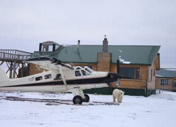 Plane©Dymond Lake Eco Lodge-Dafna Bennun