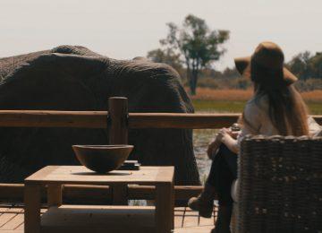 Botswana, Okavango Delta; Sanctuary Chief's Camp