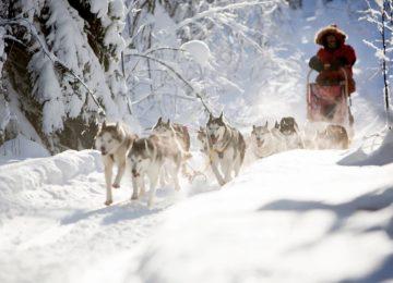 Schwedisch Lappland Winter Glamping©Aurora Safari Camp