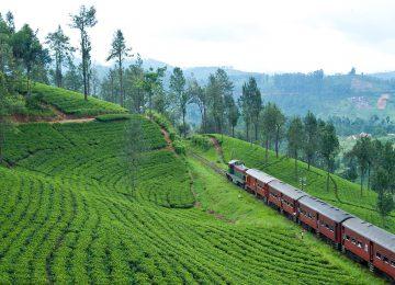 Asien - Sri Lanka