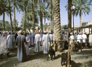 Viehmarkt in Nizwa © Ab Travco