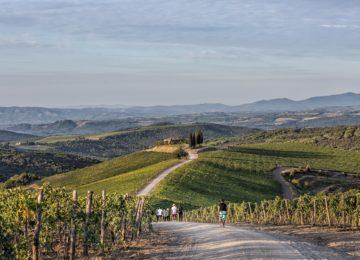 Walk in the Vineyards©Rosewood Castiglion del Bosco