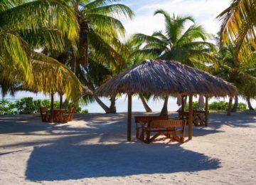 alphonse-island-facilities-beach