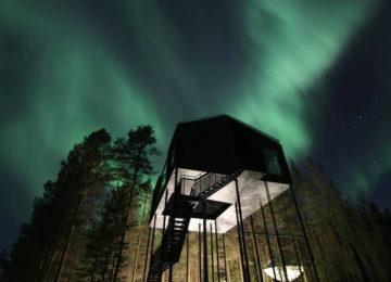 Treehotel, Lulea, Harads, Schweden Lappland by orrsken_Kent