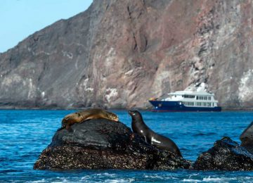 Yacht Origin Galapagos Select Luxury Travel