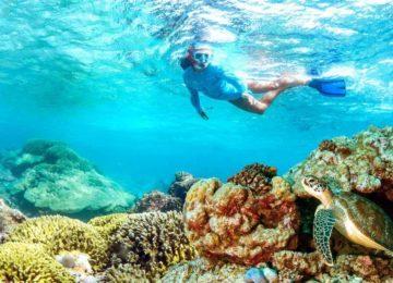 snorkeling©Alphonse Island
